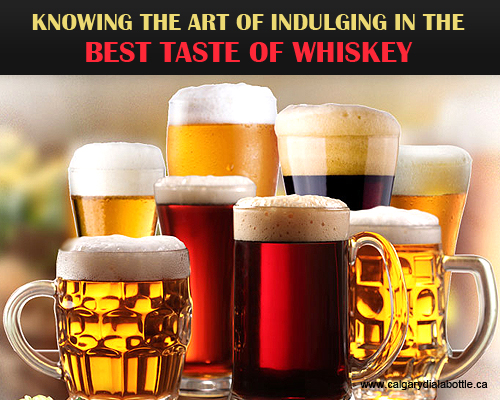 Knowing the Art of Indulging in the Best Taste of Whiskey